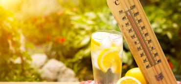 Canicule et piscine : les gestes à adopter pour garder une eau limpide