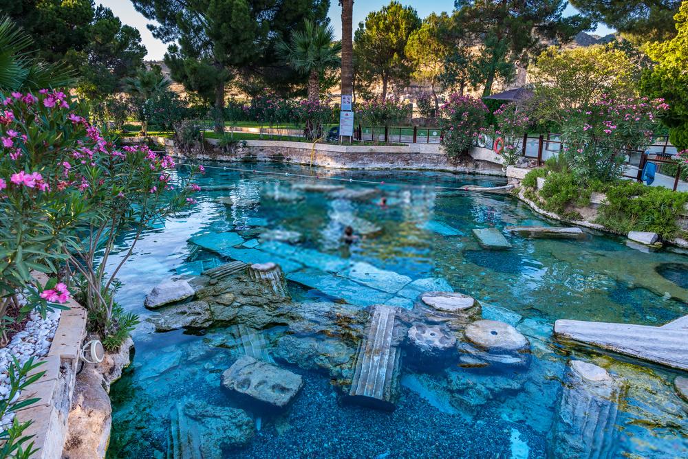 Comment fonctionne une piscine naturelle ?